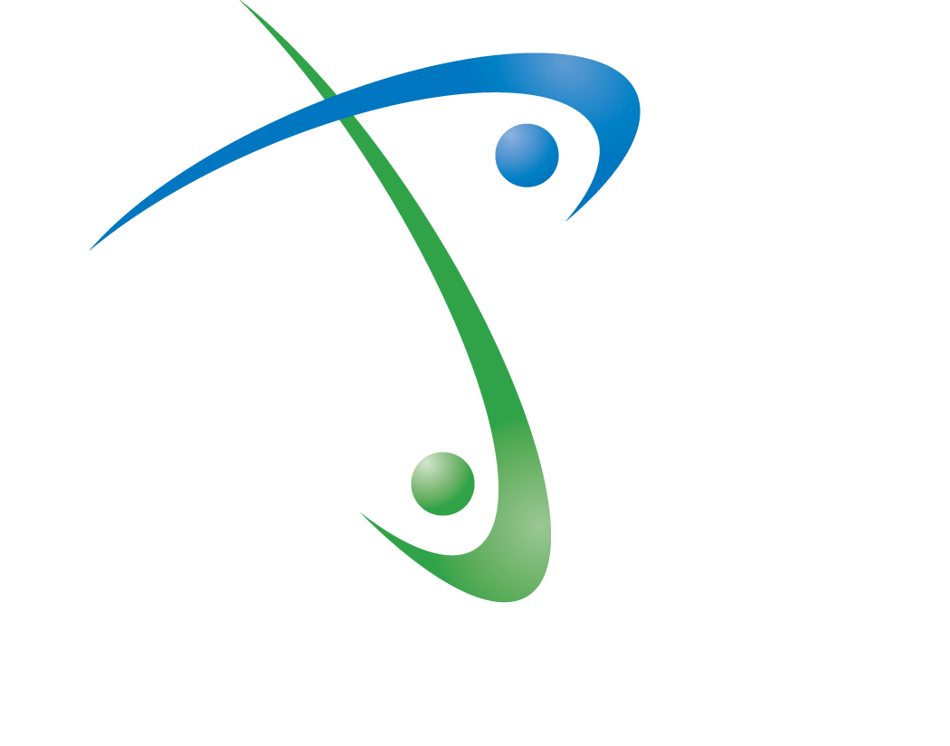Professionalize It Logo